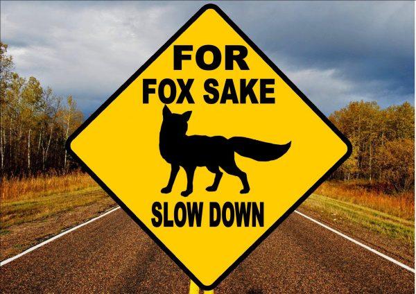 Novelty Joke Fox Road Sign