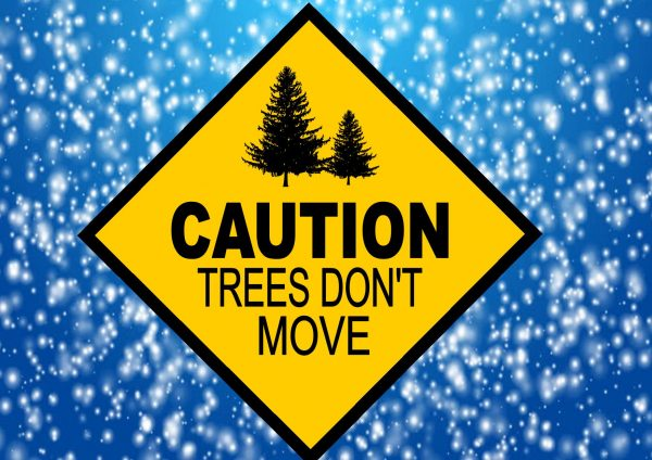 Caution Trees Don't Move Skiing Sign