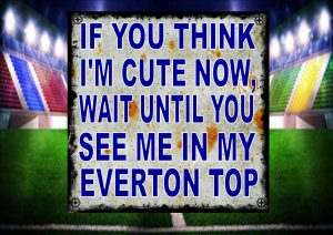 Cute Everton Top
