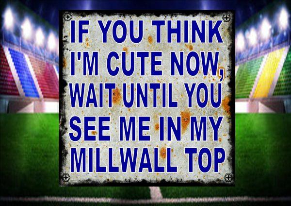 Cute Millwall Football Jersey Sign