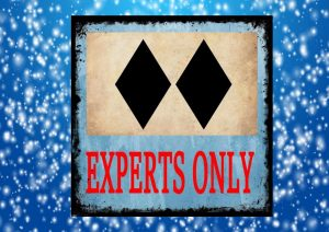 Expert Skiers Only Vintage Ski Sign