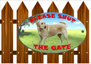 Golden Labrador Shut The Gate