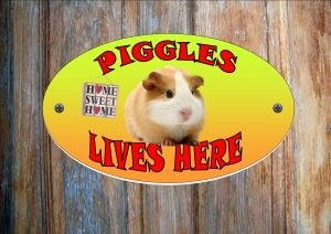 Guniea Pig Personalised Hutch Sign