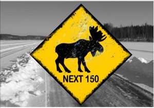 Moose Next 220km Ice Road Novelty Sign