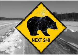 Bear Warning Ice Road Novelty Sign