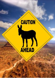 Caution Donkey Ahead Sign