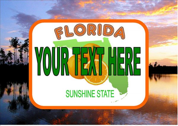 Florida Number Plate/Licence Plate