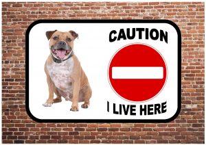Staffordshire Bull Terrier Sign